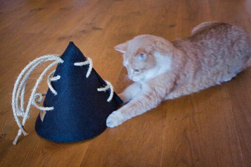 Katzenkegel Spielkegel Katzenspielzeug